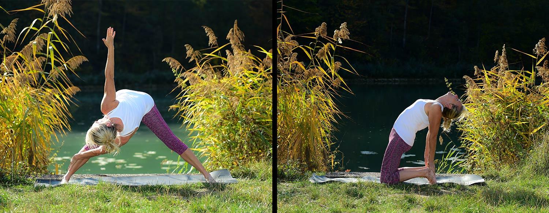yoga-meister-slide2